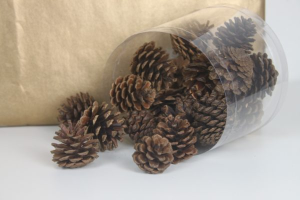 Mini Pine Cone Brown by Masons Home Decor Singapore (1)